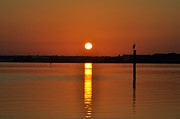 Dunedin Prints - Dunedin Florida Sunrise Print by Bill Cannon