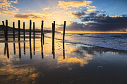 South Island Posters - Dunedin St Clair Beach at Sunrise Poster by Colin and Linda McKie