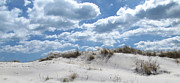 Babylon Prints - Dunes at Robert Moses Beach Print by Maude Renganeschi