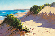 Sand Dunes Painting Posters - Dunes Central Coast Poster by Graham Gercken