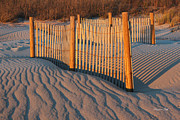 Sand Dunes Photo Framed Prints - Dunes Fence Framed Print by Suzanne Gaff