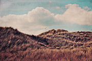 Flying Seagull Posters - Dunes Impression Poster by Angela Doelling AD DESIGN Photo and PhotoArt