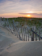 Cape Cod Landscape Posters - Dunes of Cape Cod Poster by Patrick Downey