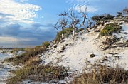 Florida Panhandle Photo Prints - Dunes of Santa Rosa Island Print by JC Findley