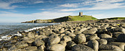 Embleton Prints - Dunstanburgh Castle panorama Print by David Head