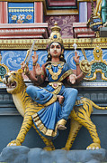 Indian Deities Metal Prints - Durga Statue on Hindu Gopuram Metal Print by Tim Gainey