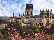 John Adams Prints - Durham springtime Print by John Adams