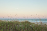Sea Oats Prints - Dusk at the Beach Print by Kay Pickens