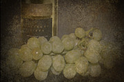White Grapes Framed Prints - Dust On The Bottle Framed Print by Pam Walker