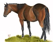 Hhorse Portrait Pastels - Dusty by Heather Gessell