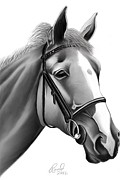 Horse Head Digital Art - Dusty Horse by Rand Herron