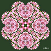 Dusty Mauve Framed Prints - Dusty Rose Kaleidoscope Framed Print by Carol F Austin
