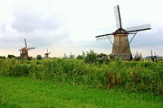 Nederland Photo Prints - Dutch Landscape with Windmills Print by Carol Groenen