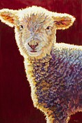 Ovine Framed Prints - Dutch Framed Print by Patricia A Griffin