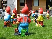Ion vincent DAnu - Dwarfs Turn Their Back on Humans