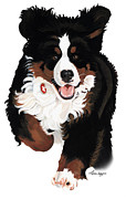 Bernese Mountain Dog Posters - Dylan Rocks Poster by Liane Weyers