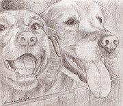 Mutt Drawings - Eager Best Friends by Audra D Lemke