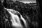 Eagle Creek Prints - Eagle Falls Black and White Print by Scott McGuire
