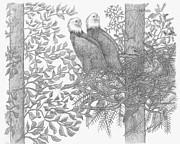 Pine Cones Drawings Prints - Eagle Family Print by Carolann Van de Ligt