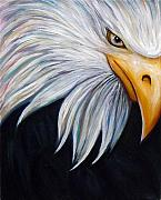 American Eagle Paintings - Eagle by Gayle Utter