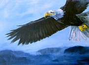 Bald Eagle Painting Framed Prints - Eagle in Flight Framed Print by Eve McCauley