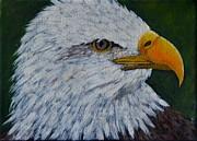 Marsha Thornton - Eagle