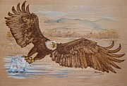 Hunt Pyrography Framed Prints - Eagle on the hunt Framed Print by Manon  Massari