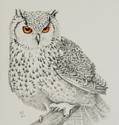 Katharine Green - Eagle Owl