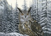 Bird Of Prey Art Paintings - Eagle Owl by Tom Blodgett Jr
