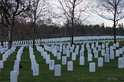 Mick Anderson - Eagle Point National Cemetery in Winter 1