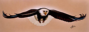 Eagle Painting Framed Prints - Eagle Stealth Framed Print by Adele Moscaritolo