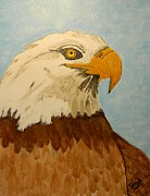 American Eagle Paintings - Eagle by Tanja Beaver