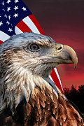 50 Stars Posters - Eagle With American Flag Poster by Thomas Woolworth