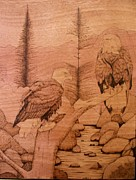 Eagle Pyrography - Eagles by Ed Cress