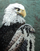 Lint Framed Prints - Eagles Framed Print by Heidi Hooper