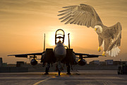 Digital Collage Photo Posters - Eagles in Afghanistan Poster by Tim Grams