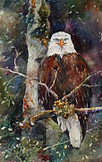 On A Branch Paintings - Eagles Perch by Renae Hill