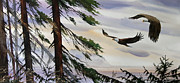 Eagle Painting Framed Prints - Eagles Romance Framed Print by James Williamson