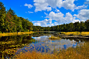 Adirondacks Photo Posters - Early Autumn at Fly Pond - Old Forge New York Poster by David Patterson