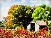 Farming Digital Art - Early Autumn Tractor Shed  Digital paint by Debbie Portwood