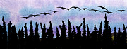 Canadian Geese Mixed Media - Early Birds by R Kyllo