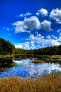 Fir Trees Photos - Early Fall Color on Fly Pond - Old Forge New York by David Patterson
