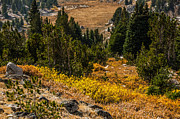 Early Fall In The Beartooth's Print by Sue Smith