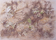 Early Autumn Mixed Media Prints - Early Fall Print by Michele Myers