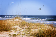 Sea Oats Digital Art Prints - Early Moon Print by Mary Timman