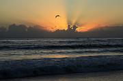 Noel Elliot - Early Morning Flight