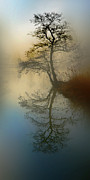 Fantasy Tree Pyrography - Early Morning by manhART