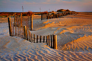 Sand Fences Acrylic Prints - Early Morning on the Dunes I Acrylic Print by Steven Ainsworth