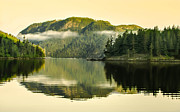 Queen Charlotte Strait Prints - Early Morning Reflections Print by Robert Bales