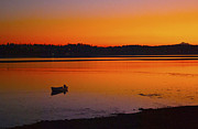 Penn Cove Greeting Cards Posters - Early Morning Poster by Ron Roberts